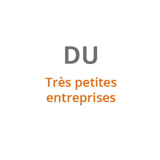 DU Très petites entreprises