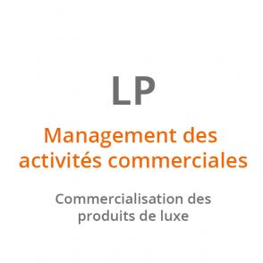 LP Management des activités commerciales – Commercialisation des produits de luxe