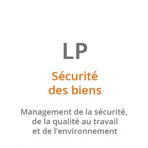LP Sécurité des biens et des Personnes : Management de la Sécurité, de la Santé au travail et de l'Environnement
